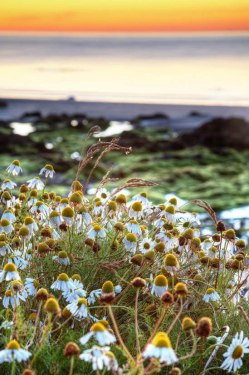 Matt Gartside - Night Time
