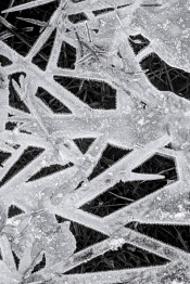"Ice Matt Gartside 22"" x 33"""