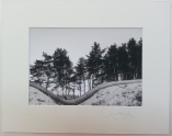 Wavy Wall Coldwell 2010 £35 mounted and wrapped